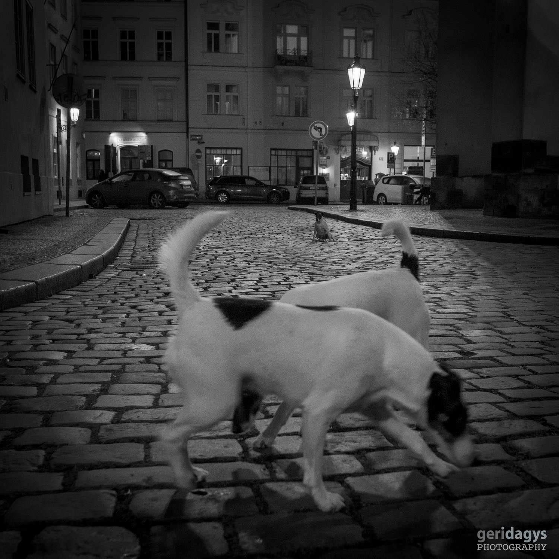 ET-AUTUMN-[PRAGUE]-[2016]-12